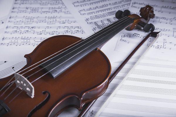 Cientistas descobrem que a música clássica evolui por seleção natural