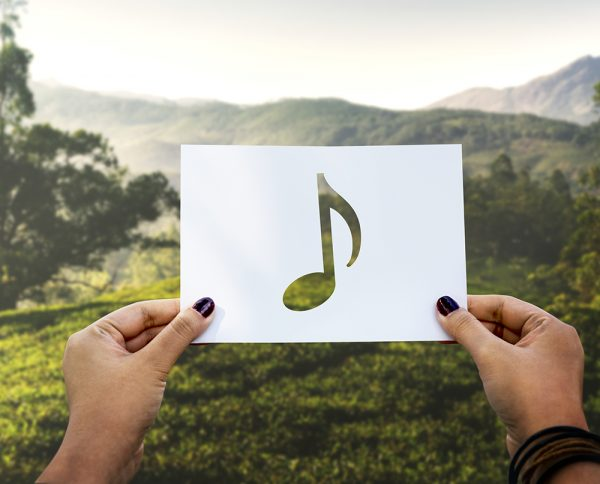 15 músicas nacionais sobre natureza e o meio ambiente
